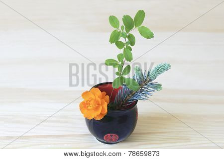 Ikebana With Orange Flower, Branches Of Blue Spruce And Shrubs In A Cup