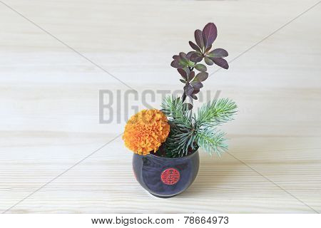 Ikebana With Orange Flower, Branches Of Blue Spruce And Barberry In The Blue-red Cup