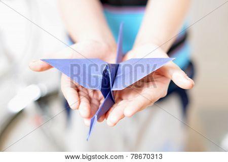 Origami Crane In Children's Hands