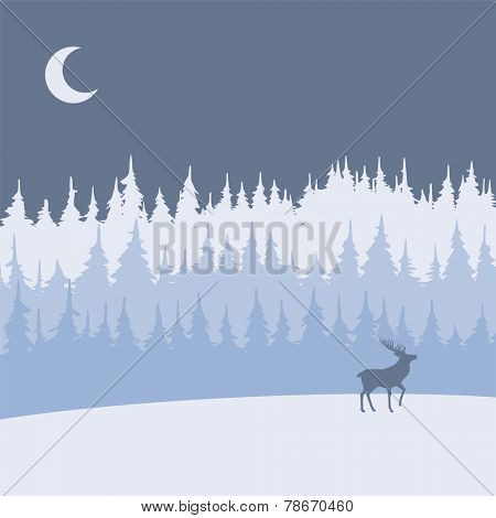 vector background with night winter forest