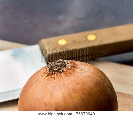 Onion Chopped Means Food Preparation And Cooked