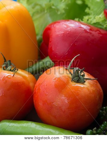 Bell Peppers Represents Fresh Food And Tomato