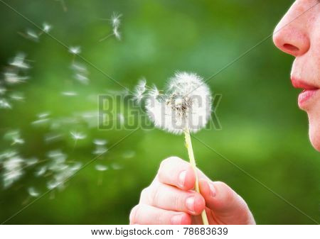a woman blowing a dandelion during summer time (focus on woman)