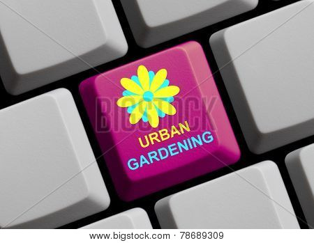 Computer Keyboard urban gardening