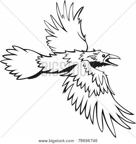 sketch of flying raven, black and white, outline