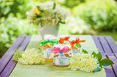foto of elderflower  - Glasses with elderflower flower jelly in the garden - JPG