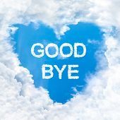 picture of say goodbye  - goodbye word nature on blue sky inside love heart cloud form - JPG