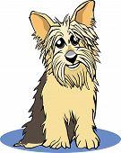 foto of yorkie  - A vector cartoon illustration of a york shire terrier dog - JPG