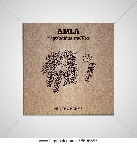 Herbs and Spices Collection - Amla