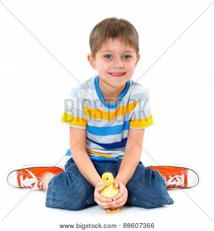 Boy and ducklings