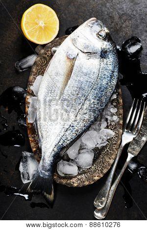 Fresh fish on ice (dark vintage background)