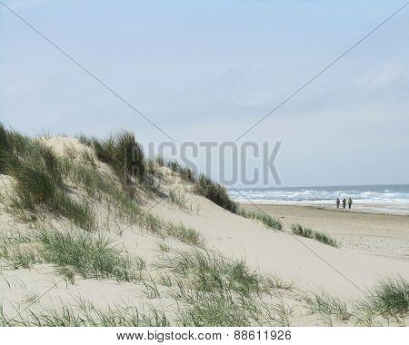 Belgian Coastal Landscape