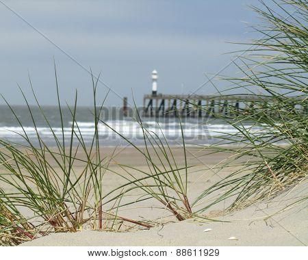 Belgian Coast, Blankenberge
