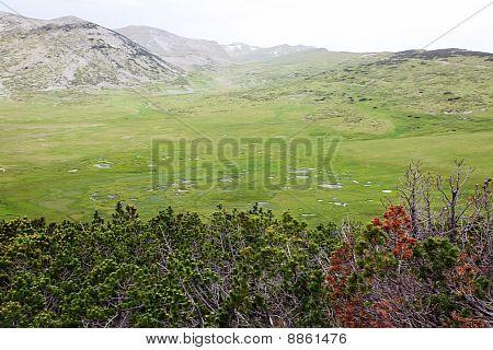 Begovo Field In Macedonia