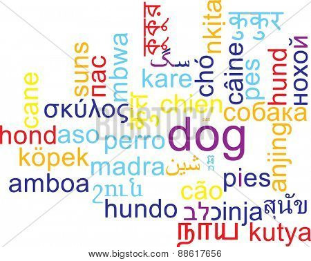 Background concept wordcloud multilanguage international many language illustration of dog
