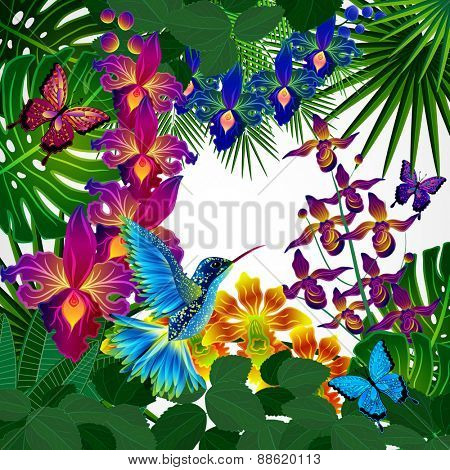 Floral design background. Tropical orchid flowers, birds and butterflies.