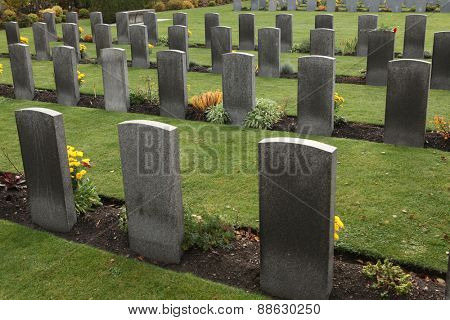 Commonwealth War Cemetery with graves of UK and Allied soldiers fallen during World War II at the Olsany Cemetery in Prague, Czech Republic.