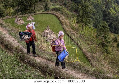 Two Chinese Women Peasants, Farmers, Go On Field Work.