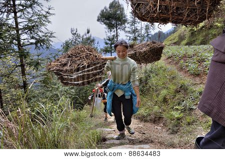 Peasant Girl Carries Weight On Yoke, Mountainous Area Rural China.