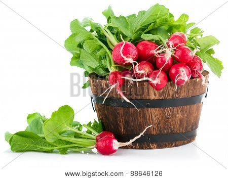 Fresh radish with green leaves in wooden bucket. Isolated on white background