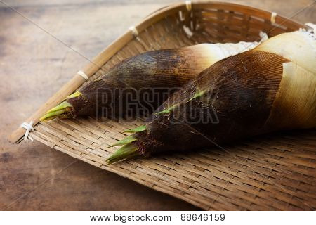 Fresh harvested bamboo shoot or bamboo sprouts with outer husk still intact, on bamboo tray. Shallow depth of field.