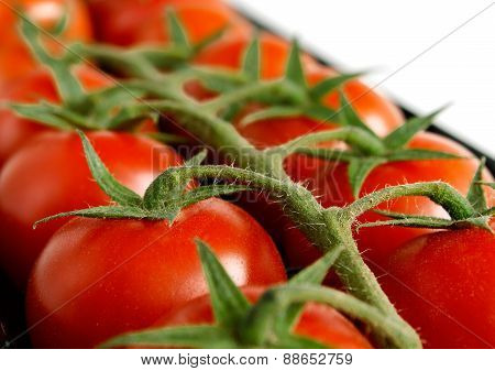 Tomatoes In A Box On A White Background Close Up.