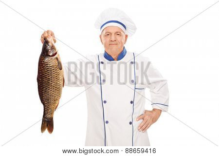 Mature male chef in a clean white uniform holding a fresh uncooked fish isolated on white background