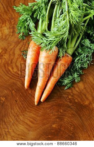 ripe organic carrots with green leaves