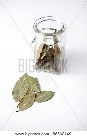 Bay leaf and jar