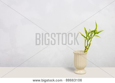 Plant In Old Vase On Concrete Background