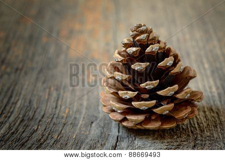 Isolated Fir Cone With Wooden Background