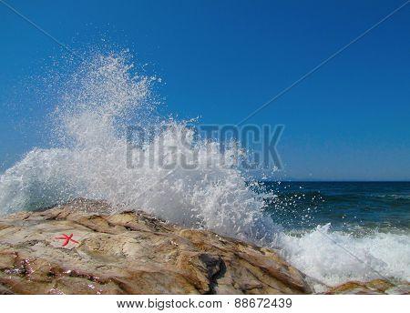 Waves And Starfish