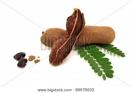 Tamarind And Leaves On Isolated White Background