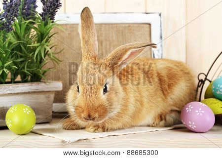 Cute red rabbit with Easter eggs on shelf, closeup