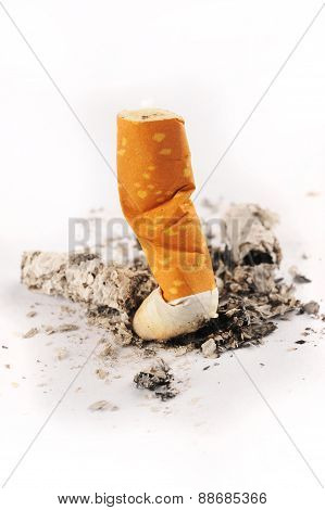 Extinguished Cigarette On White Background