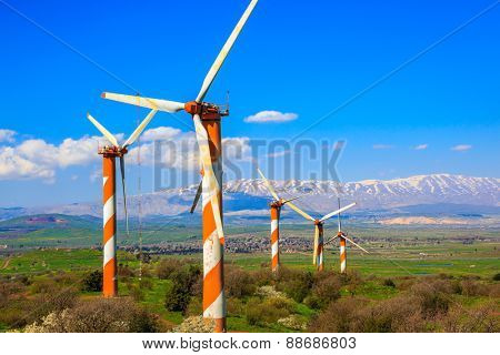 Israel. The blossoming Golan heights in a sunny day. Some huge modern windmills. In the distance snow-covered Hermon is seen
