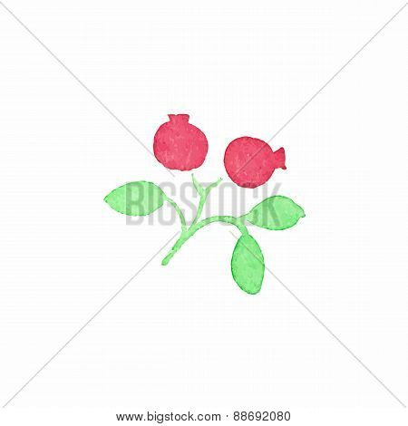 Watercolor cranberry on the white background, aquarelle. Vector illustration.