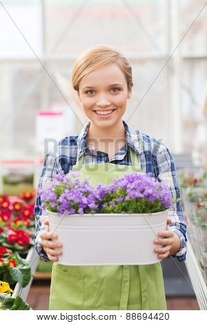 people, gardening and profession concept - happy woman or gardener holding flowers in greenhouse