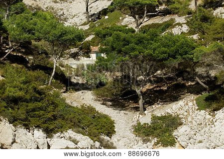 Calanque Of Marseille