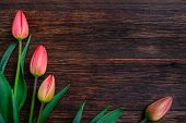 foto of bittersweet  - Red tulips flowers bouquet on old wooden table background - JPG