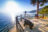 picture of cannon  - Cannon on the coastline of Ligurian Sea - JPG