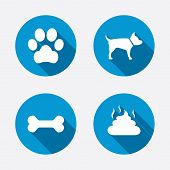 stock photo of petting  - Pets icons - JPG