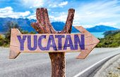 foto of yucatan  - Yucatan wooden sign with road background - JPG