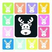 picture of roebuck  - Deer Icon color set vector illustration  - JPG