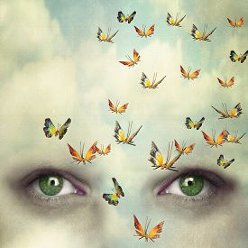 picture of forehead  - Two eyes with the sky and so many butterflies flying on the forehead - JPG