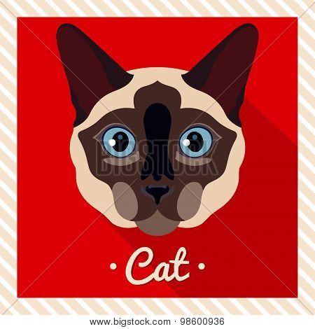 Vector portrait of a  Siamese cat. Symmetrical portraits of animals. Vector Illustration.