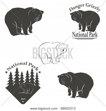 logo with the image of a bear