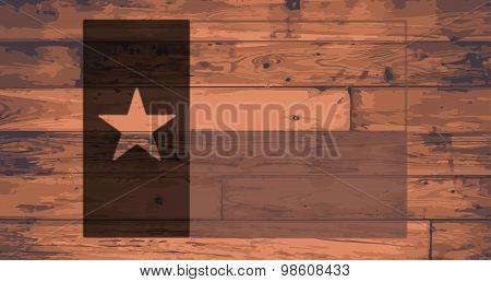 Texas State Flag Brand