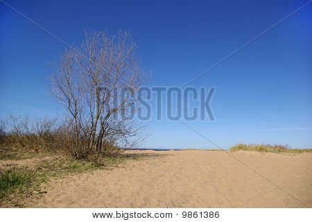 The Coast Of Finnish Gulf