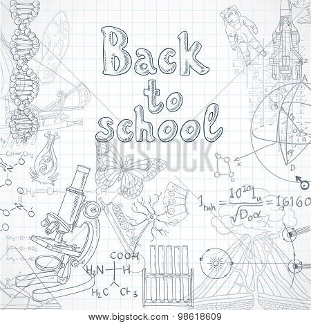 Back To School  Squared Paper Sheet With Doodles